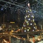 Deutschlands höchster Weihnachtsbaum steht auf dem Dortmunder Hansaplatz